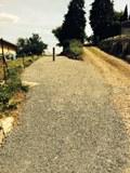 chemin-du-mont1