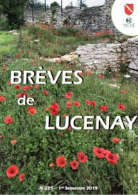Bréves de Lucenay - 1 semestre 2019